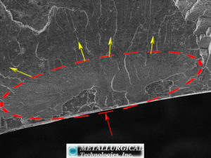 Higher magnification SEM image of the ID edge (at red arrow) of the nipple fracture shows the surface is oxidized (circled area) along the ID. The fracture ridge patterns indicate the fracture initiated at the ID surface and progressed in the direction of the yellow arrows. (SEM Image, Mag: 250X)
