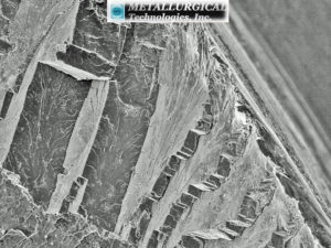SEM image of the OD edge of the fitting fracture surface shows a transgranular cleavage-type fracture surface. (SEM Image Mag: 200X)